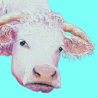 White Cow On Turquoise  Poster by Jan Matson