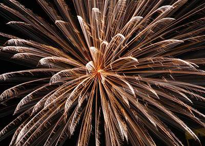 White Fireworks On The Beach Poster