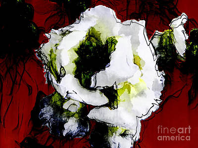 White Flower On Red Background Poster