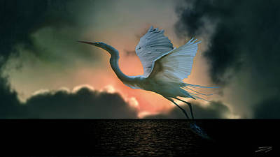 White Heron At Sundown Poster