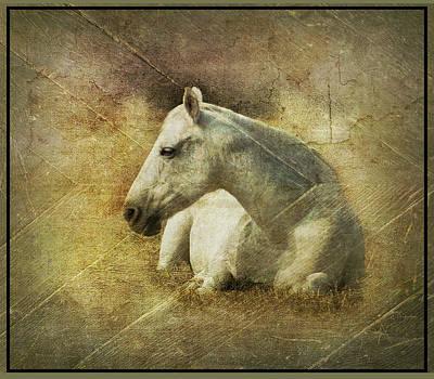 White Horse Art Poster