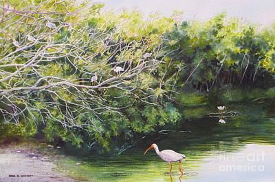 White Ibis Haven Poster