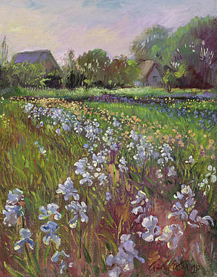 White Irises And Farmstead Poster