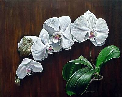White Orchids II Poster