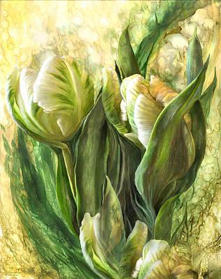 White Parrot Tulips Poster