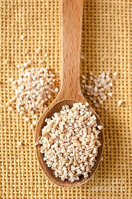 White Pearl Barley Dry Groats Poster
