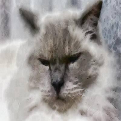 White Persian Cat In Watercolor Poster