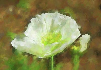 White Poppy 1 Impression  Poster by Linda Brody