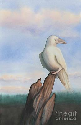 White Raven Poster by Anne Havard