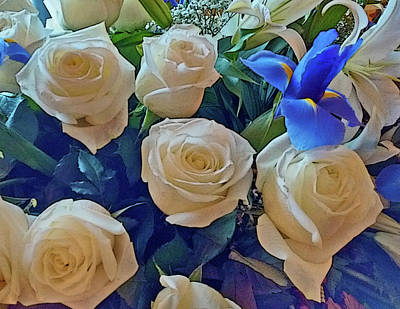 White Roses And Blue Irises Poster
