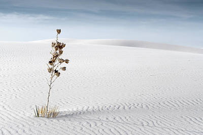 White Sands Poster by Mike Irwin