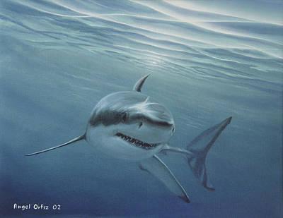 White Shark Poster by Angel Ortiz