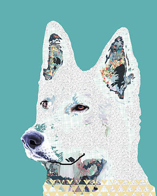 White Shepherd Poster by Claudia Schoen