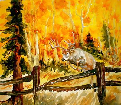 White Tail Deer Poster