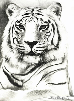 White Tiger Portrait Poster by Lin Petershagen