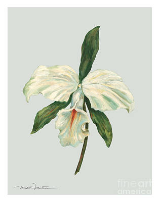White Trumpet Orchid Poster by Meridith Martens