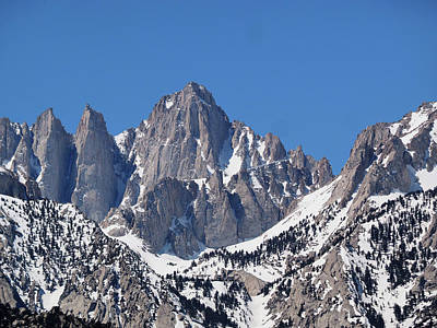 Mt. Whitney From Lone Pine Campground Poster