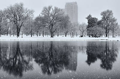 Snowy Reflections Of Trees In Lake At City Park, Denver Co  Poster