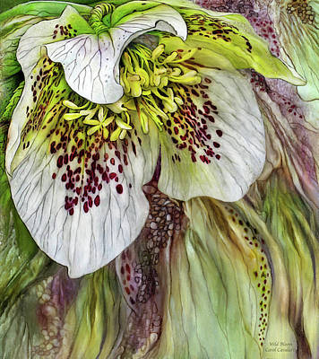 Wild Bloom Poster