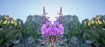 Wild Flower Reflection Poster
