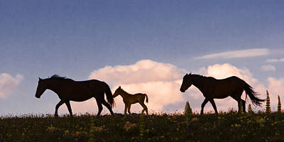 Wild Horses And Clouds Poster