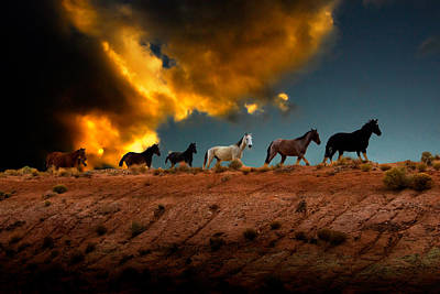 Wild Horses At Sunset Poster by Harry Spitz