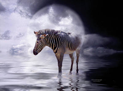 Wild In The Moonlight Poster by Carol Cavalaris