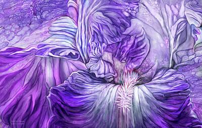 Poster featuring the mixed media Wild Iris Purple by Carol Cavalaris