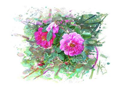 Wild Rose - Watercolor, Splash Poster