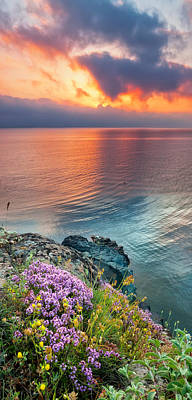 Wild Thyme By The Sea Poster by Evgeni Dinev
