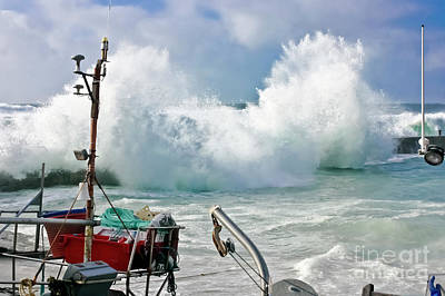 Wild Waves In Cornwall Poster by Terri Waters