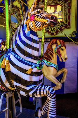 Wild Zebra Ride Poster