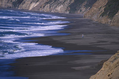 Wildcat Beach - Point Reyes Poster by Soli Deo Gloria Wilderness And Wildlife Photography
