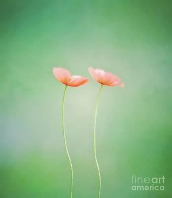 Wildflower Duet Poster