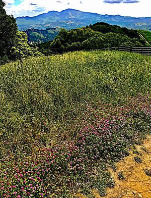 Wildflower Ridge Poster by Cadence Spalding