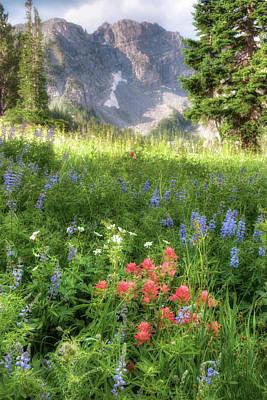 Wildflowers In Albion Basin Utah Poster