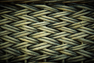 Poster featuring the photograph Willow Weave by Les Cunliffe