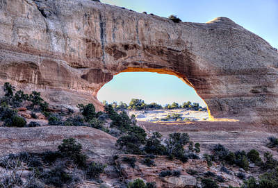 Wilson Arch In The Morning Poster by Alan Toepfer