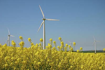 Wind Turbines Across A Field Of Flowering Oilseed Rape (brassica Napus) Poster by Maria Jauregui Ponte