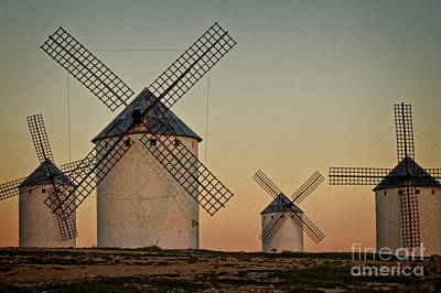 Windmills In Golden Light Poster