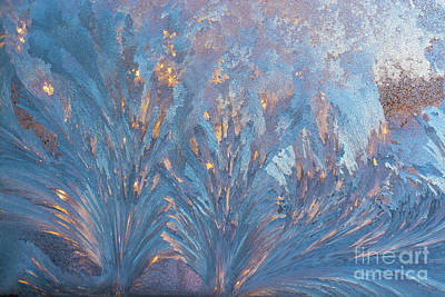 Window Frost At Sunset Poster by Cheryl Baxter