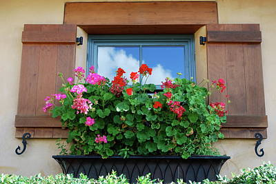 Window With Geraniums Poster by Dorota Nowak