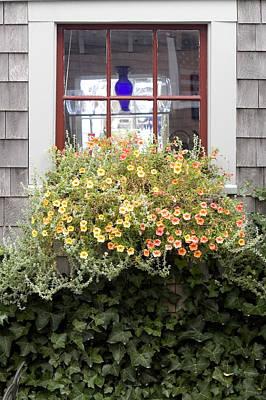 Windowbox - Nantucket Poster by Henry Krauzyk