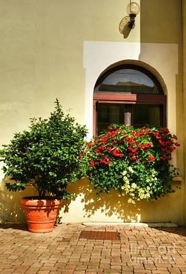 Windows Of Vienne 2 Poster by Mel Steinhauer