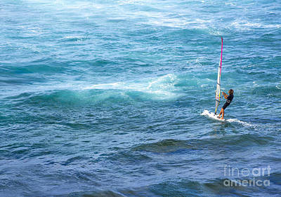 Windsurfer In Maui Hawaii Poster by Diane Diederich