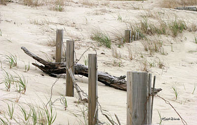 Windswept Beach Fence Cape Cod Massachusetts Poster