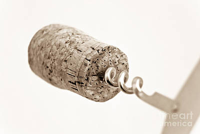 Poster featuring the photograph Wine Cork by Yurix Sardinelly
