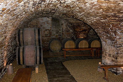 Wine Tasting Cellar Poster by Sally Weigand