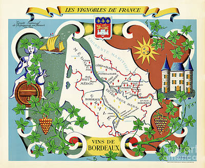 Wines Of Bordeaux Poster