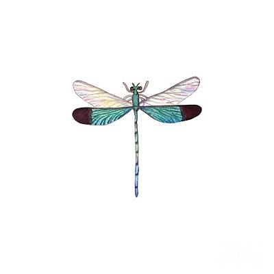 Winged Jewels 1, Watercolor Tropical Dragonfly Aqua Blue Black Poster